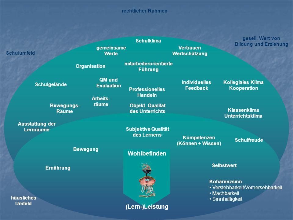 Ernährung Bewegung Selbstwert Kohärenzsinn Verstehbarkeit/Vorhersehbarkeit Machbarkeit Sinnhaftigkeit Kompetenzen (Können + Wissen) Schulumfeld rechtl
