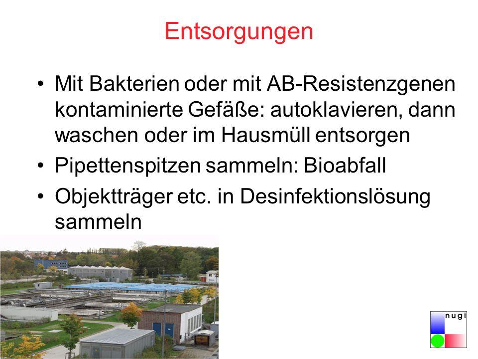 Entsorgungen Mit Bakterien oder mit AB-Resistenzgenen kontaminierte Gefäße: autoklavieren, dann waschen oder im Hausmüll entsorgen Pipettenspitzen sammeln: Bioabfall Objektträger etc.
