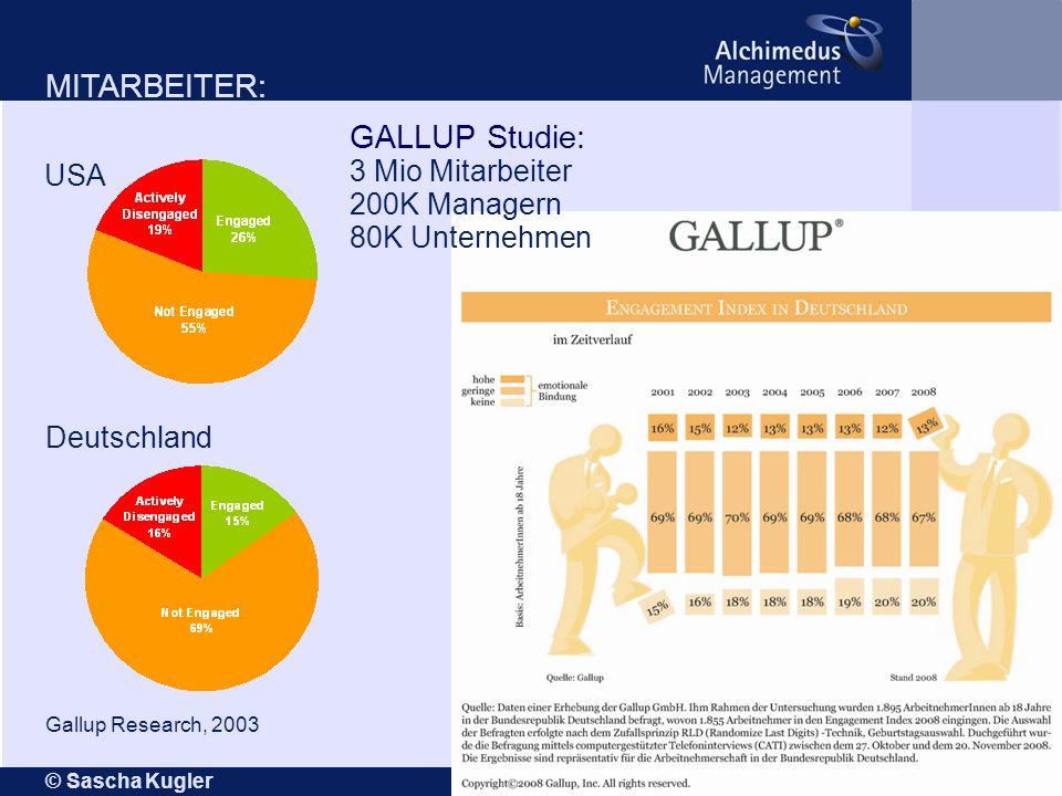© Sascha Kugler Seite 11 USA Deutschland Gallup Research, 2003 MITARBEITER: GALLUP Studie: 3 Mio Mitarbeiter 200K Managern 80K Unternehmen
