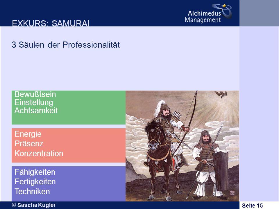 © Sascha Kugler Seite 15 EXKURS: SAMURAI 3 Säulen der Professionalität Fähigkeiten Fertigkeiten Techniken Bewußtsein Einstellung Achtsamkeit Energie P