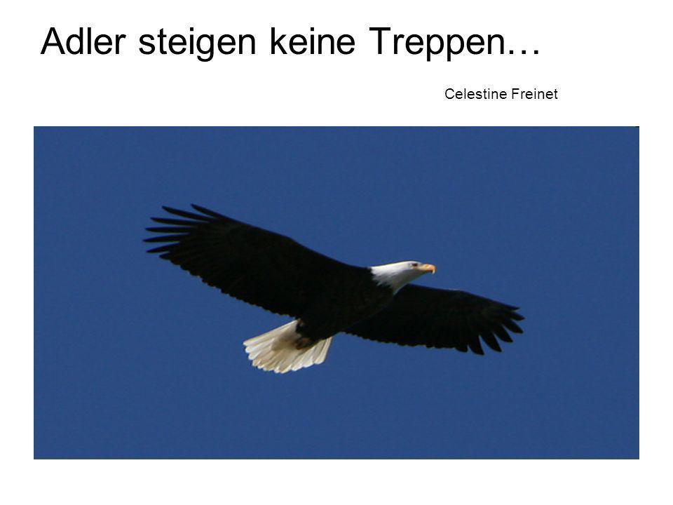 Adler steigen keine Treppen… Celestine Freinet