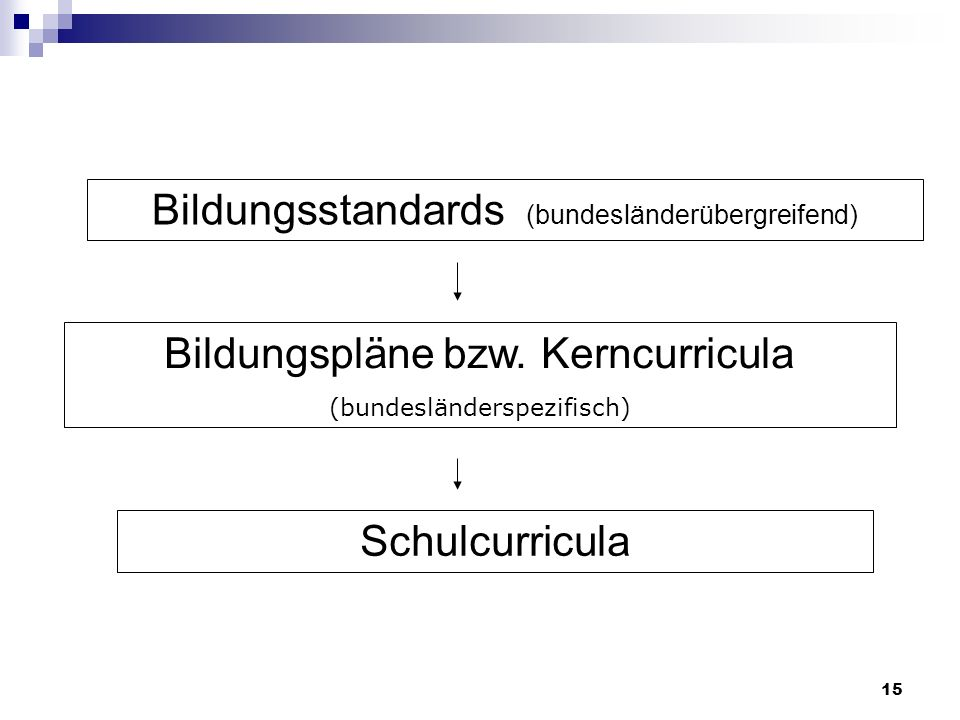 Bildungspläne bzw. Kerncurricula (bundesländerspezifisch) Schulcurricula Bildungsstandards (bundesländerübergreifend) 15