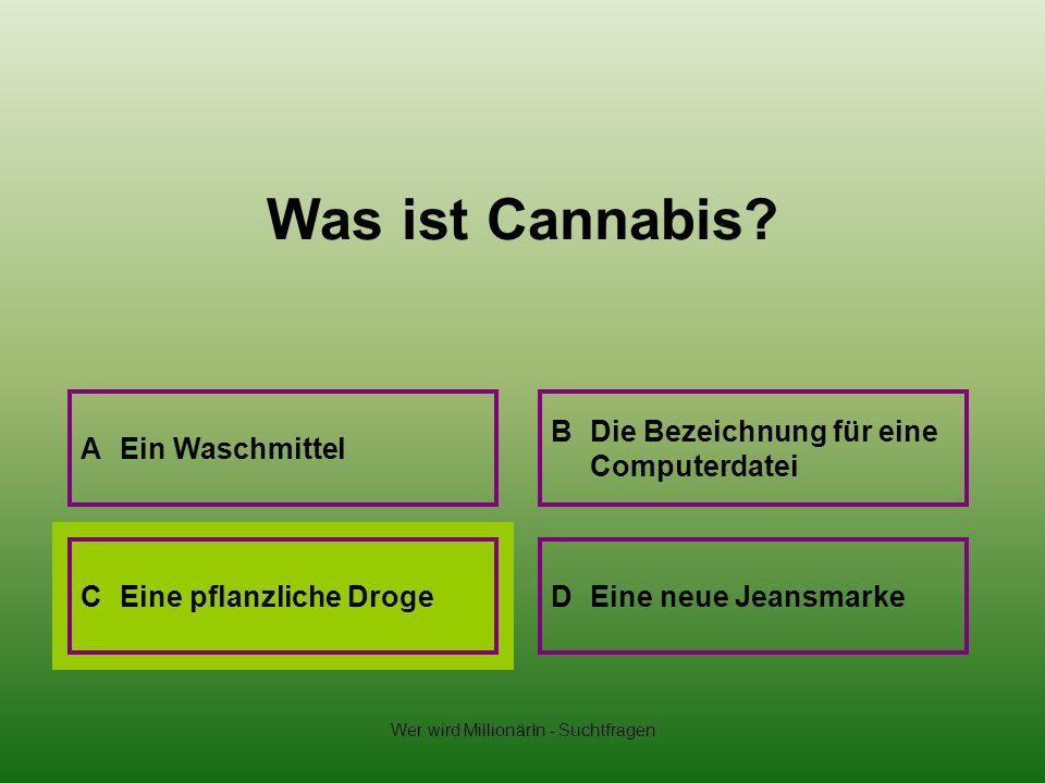 Wer wird MillionärIn - Suchtfragen Was ist Cannabis? A Ein Waschmittel B Die Bezeichnung für eine Computerdatei D Eine neue JeansmarkeC Eine pflanzlic