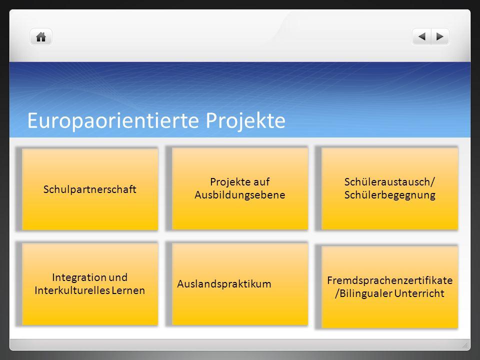 Europaorientierte Projekte Schulpartnerschaft Projekte auf Ausbildungsebene Schüleraustausch/ Schülerbegegnung Integration und Interkulturelles Lernen