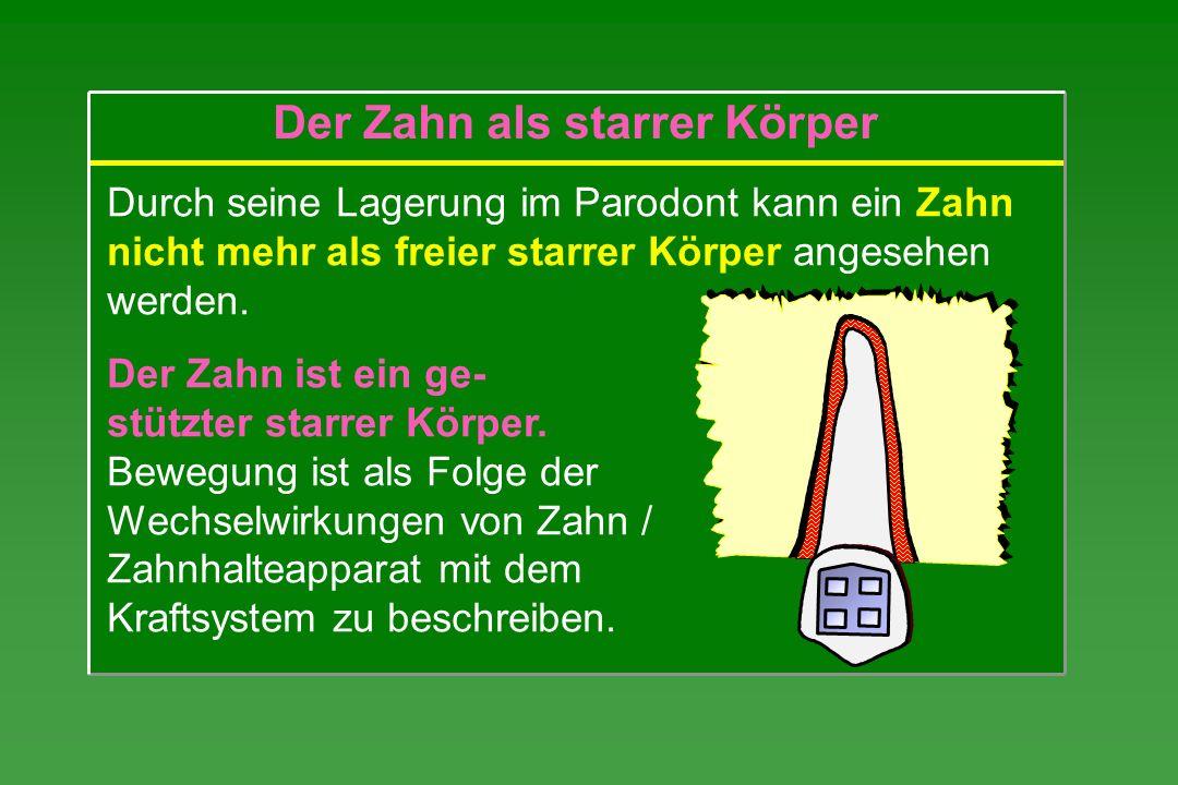 Durch seine Lagerung im Parodont kann ein Zahn nicht mehr als freier starrer Körper angesehen werden. Der Zahn ist ein ge- stützter starrer Körper. Be