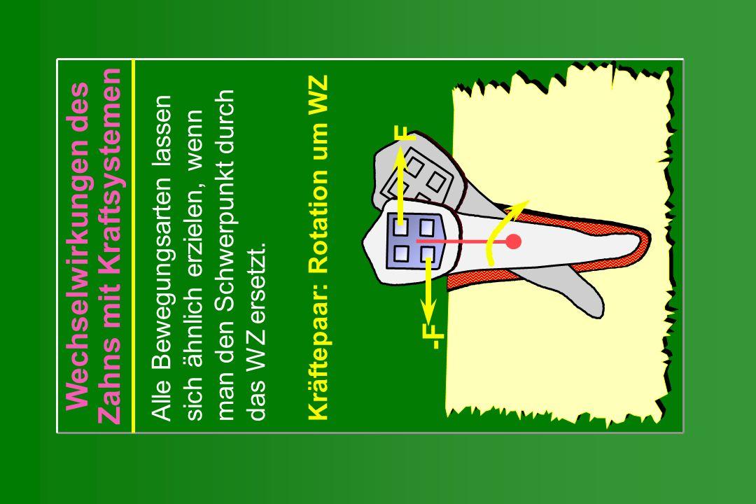 Wechselwirkungen des Zahns mit Kraftsystemen Alle Bewegungsarten lassen sich ähnlich erzielen, wenn man den Schwerpunkt durch das WZ ersetzt. Kräftepa