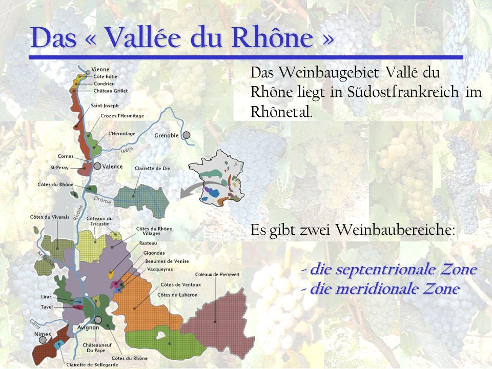 Das « Vallée du Rhône » Das Weinbaugebiet Vallé du Rhône liegt in Südostfrankreich im Rhônetal. Es gibt zwei Weinbaubereiche: - die septentrionale Zon