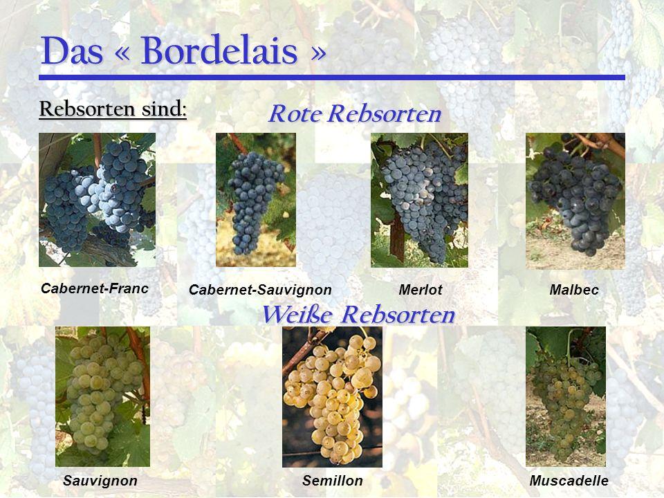 Das « Bordelais » Rebsorten sind: Cabernet-Franc Cabernet-SauvignonMerlotMalbec Rote Rebsorten Weiße Rebsorten SauvignonSemillonMuscadelle