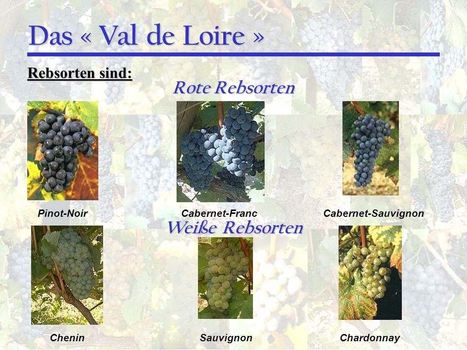 Das « Val de Loire » Rote Rebsorten Rebsorten sind: Pinot-NoirCabernet-FrancCabernet-Sauvignon Weiße Rebsorten CheninSauvignonChardonnay