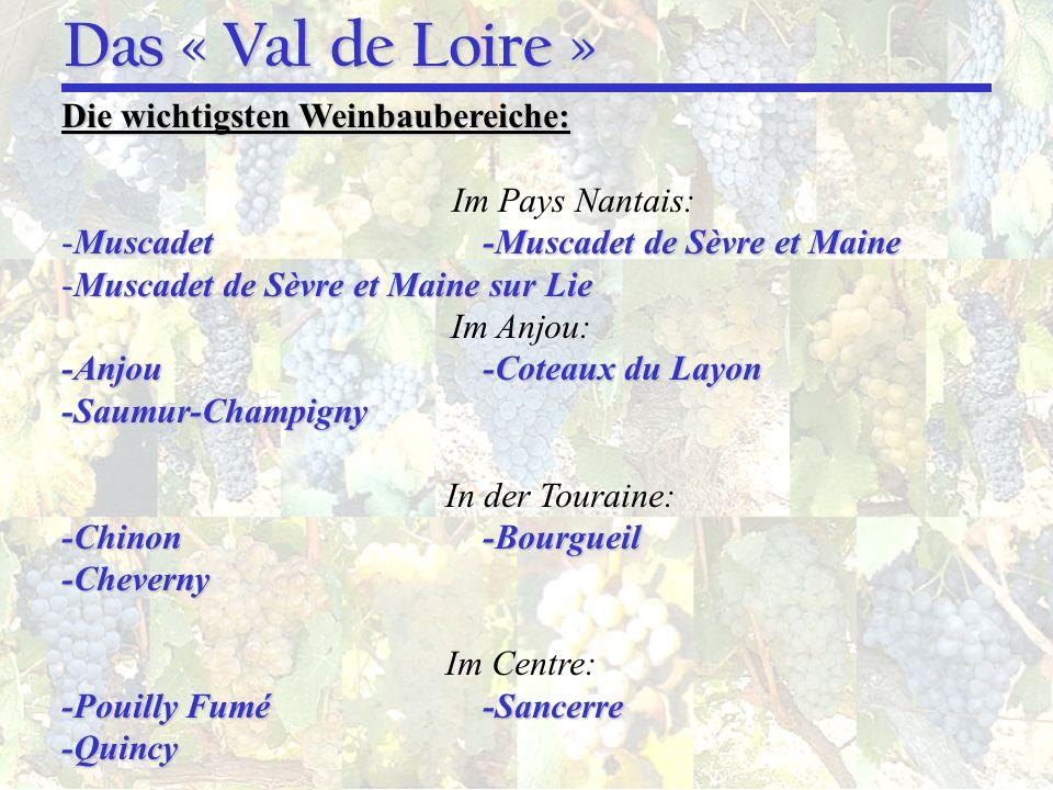 Das « Val de Loire » Die wichtigsten Weinbaubereiche: Im Pays Nantais: -Muscadet-Muscadet de Sèvre et Maine -Muscadet de Sèvre et Maine sur Lie Im Anj