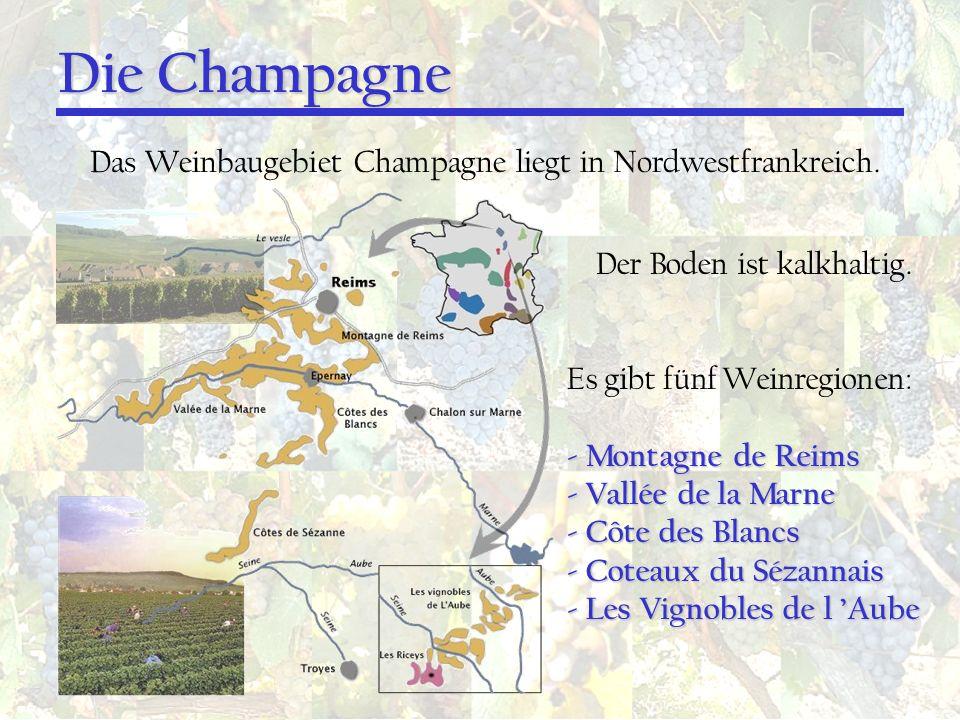 Die Champagne Das Weinbaugebiet Champagne liegt in Nordwestfrankreich. Der Boden ist kalkhaltig. Es gibt fünf Weinregionen: - Montagne de Reims - Vall
