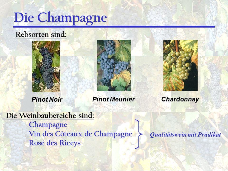 Die Champagne Rebsorten sind: Pinot Noir Pinot Meunier Chardonnay Die Weinbaubereiche sind: Champagne Vin des Côteaux de Champagne Rosé des Riceys Qua