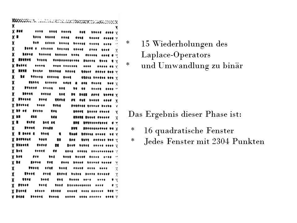 Das Ergebnis dieser Phase ist: * 16 quadratische Fenster * Jedes Fenster mit 2304 Punkten * 15 Wiederholungen des Laplace-Operators * und Umwandlung z