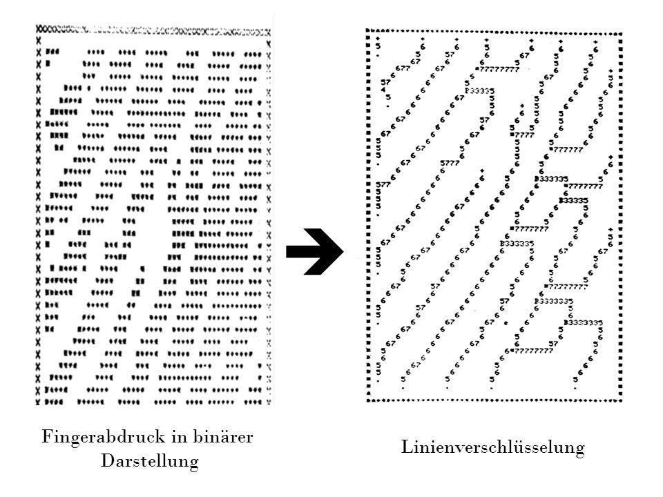 Fingerabdruck in binärer Darstellung Linienverschlüsselung