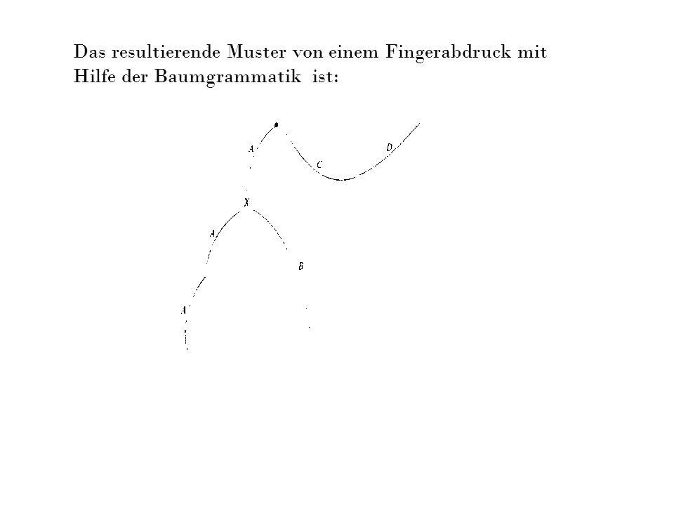 Das resultierende Muster von einem Fingerabdruck mit Hilfe der Baumgrammatik ist: