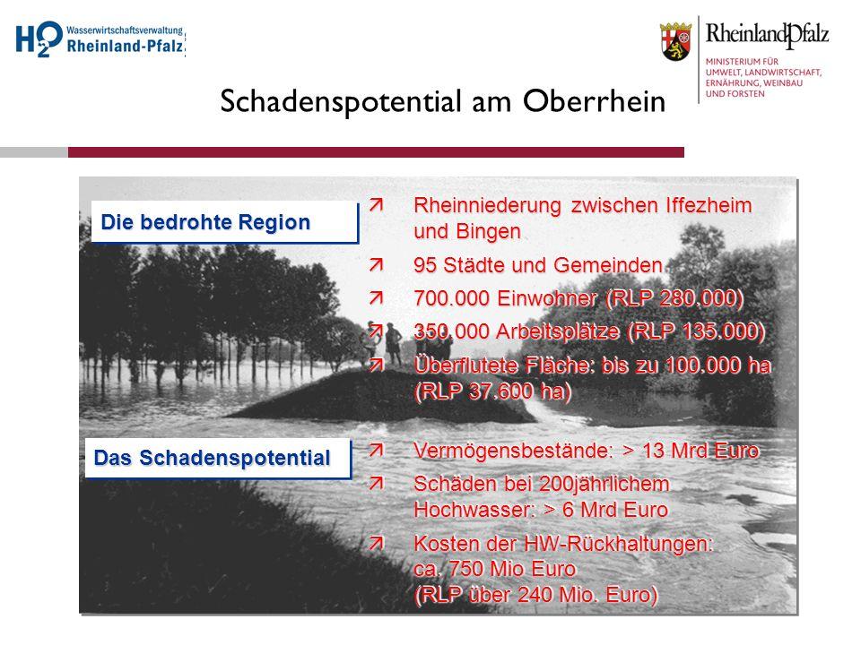 Schadenspotential am Oberrhein Rheinniederung zwischen Iffezheim und Bingen Rheinniederung zwischen Iffezheim und Bingen 95 Städte und Gemeinden 95 St