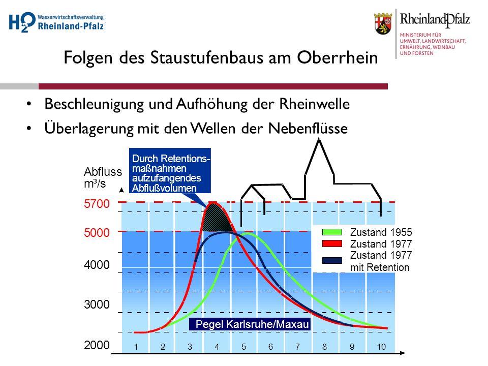 Folgen des Staustufenbaus am Oberrhein Abfluss m³/s 5700 5000 4000 3000 2000 12345678910 Pegel Karlsruhe/Maxau Zustand 1955 DurchRetentions- maßnahmen