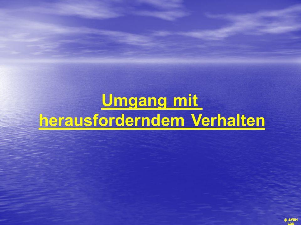 © SfEH LDK Umgang mit herausforderndem Verhalten