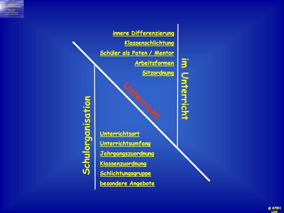 Unterricht innere Differenzierung Klassenschlichtung Schüler als Paten / Mentor Arbeitsformen Sitzordnung im Unterricht Unterrichtsort Unterrichtsumfa