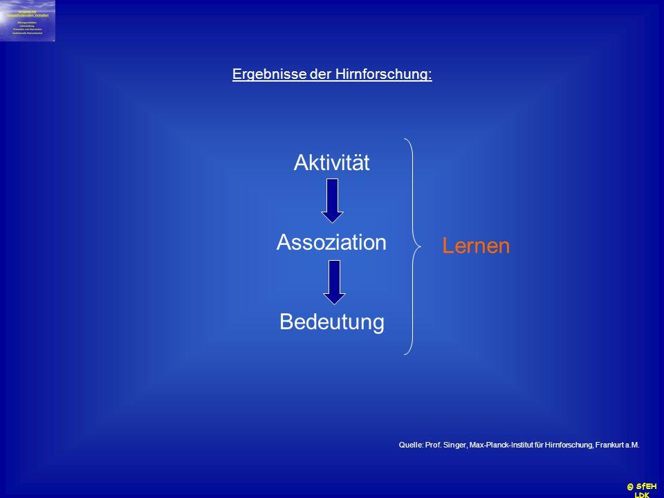 Ergebnisse der Hirnforschung: Aktivität Assoziation Bedeutung Quelle: Prof. Singer, Max-Planck-Institut für Hirnforschung, Frankurt a.M. Lernen © SfEH