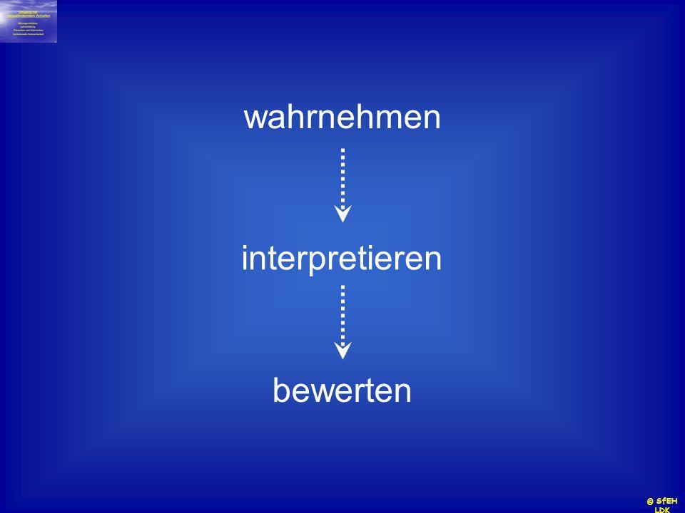 wahrnehmen interpretieren bewerten © SfEH LDK
