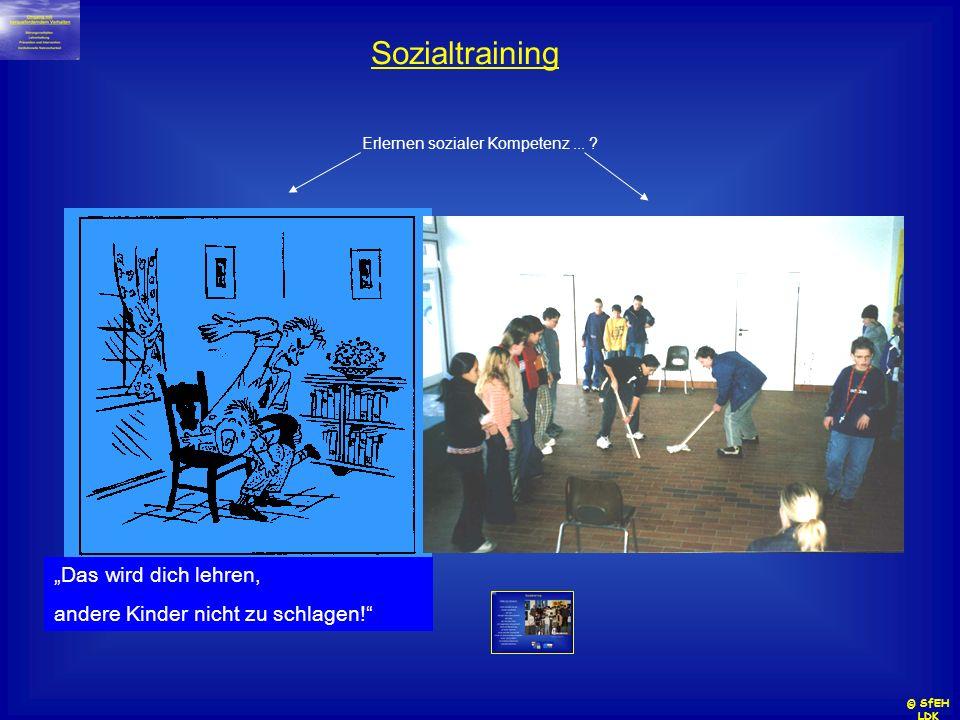 Sozialtraining Erlernen sozialer Kompetenz... ? Das wird dich lehren, andere Kinder nicht zu schlagen! © SfEH LDK