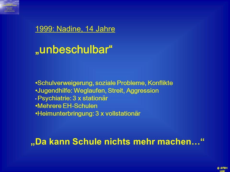 1999: Nadine, 14 Jahre unbeschulbar Schulverweigerung, soziale Probleme, Konflikte Jugendhilfe: Weglaufen, Streit, Aggression Psychiatrie: 3 x station