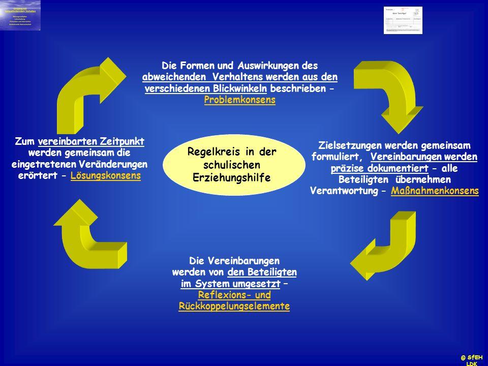 Regelkreis in der schulischen Erziehungshilfe Die Formen und Auswirkungen des abweichenden Verhaltens werden aus den verschiedenen Blickwinkeln beschr