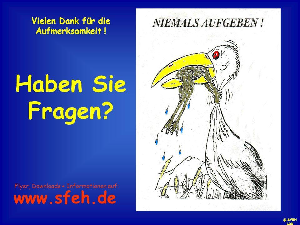 Vielen Dank für die Aufmerksamkeit ! Haben Sie Fragen? Flyer, Downloads + Informationen auf: www.sfeh.de © SfEH LDK