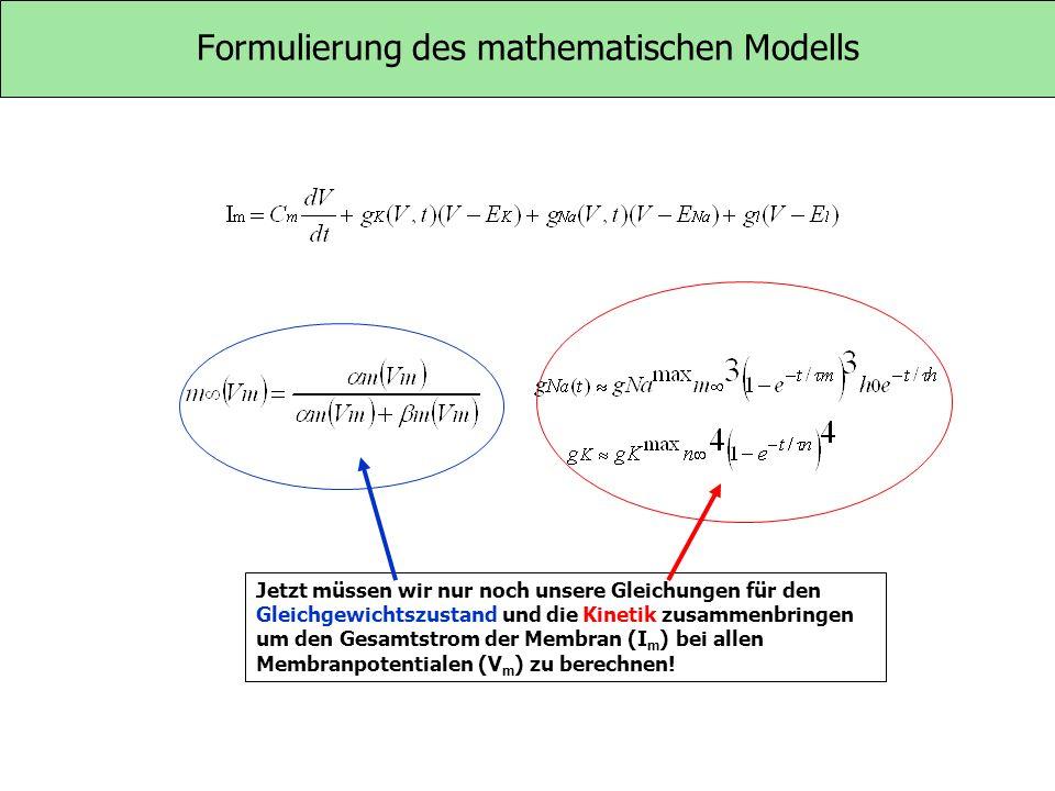Formulierung des mathematischen Modells Jetzt müssen wir nur noch unsere Gleichungen für den Gleichgewichtszustand und die Kinetik zusammenbringen um