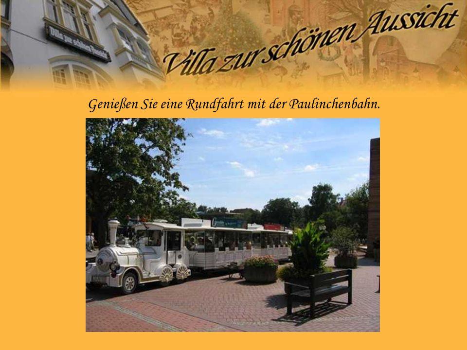 Genießen Sie eine Rundfahrt mit der Paulinchenbahn.