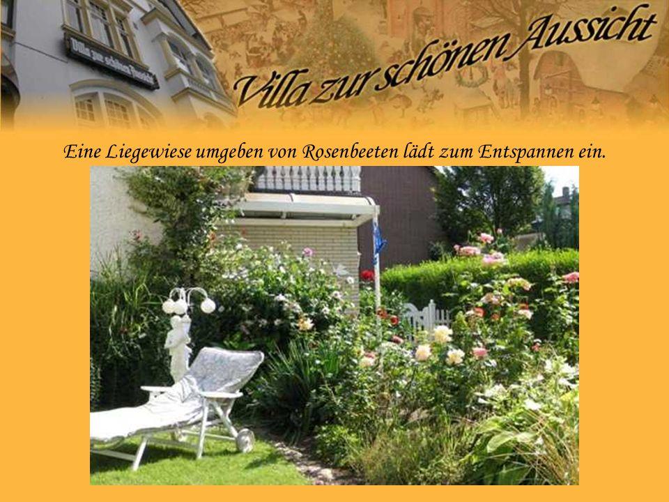 Eine Liegewiese umgeben von Rosenbeeten lädt zum Entspannen ein.
