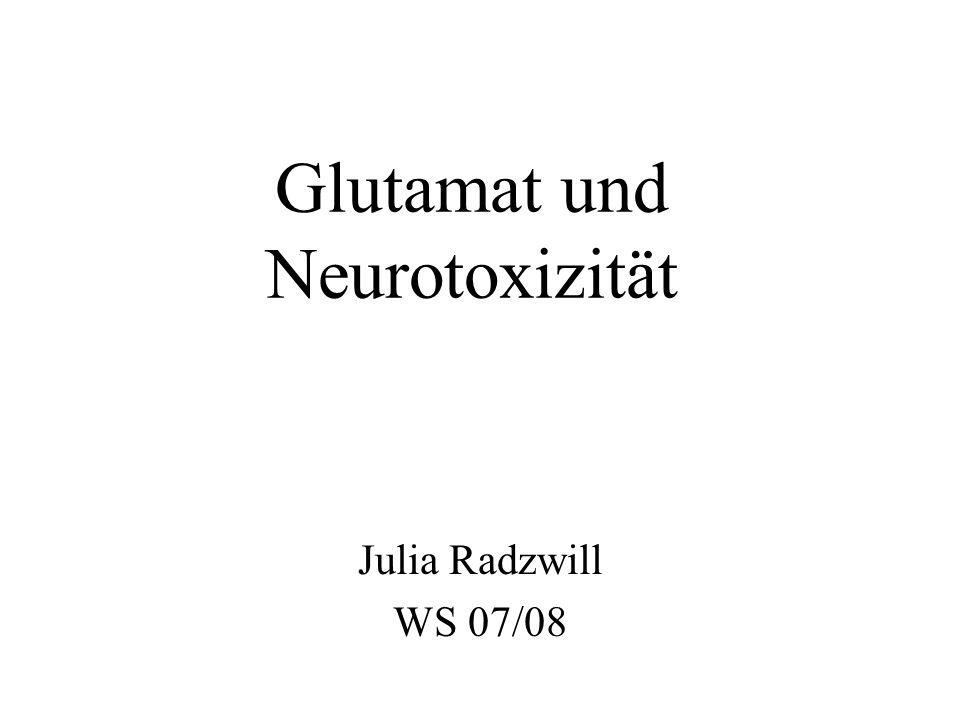 Biochemische Ursachen der Glutamat-Neurotoxizität Ionotrope Rezeptoren Metabotrope Rezeptoren G ER IP 3 Ca 2+ Na + Cl – Ca 2+ Na + -& Cl – - Aufnahme lässt die Zelle anschwellen Stress Ca 2+ - overload führt zur Exzitotoxizität (13)