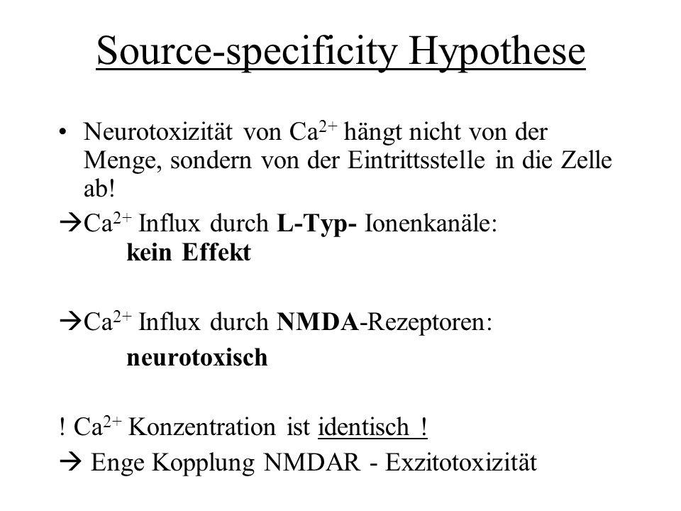 Source-specificity Hypothese Neurotoxizität von Ca 2+ hängt nicht von der Menge, sondern von der Eintrittsstelle in die Zelle ab! Ca 2+ Influx durch L