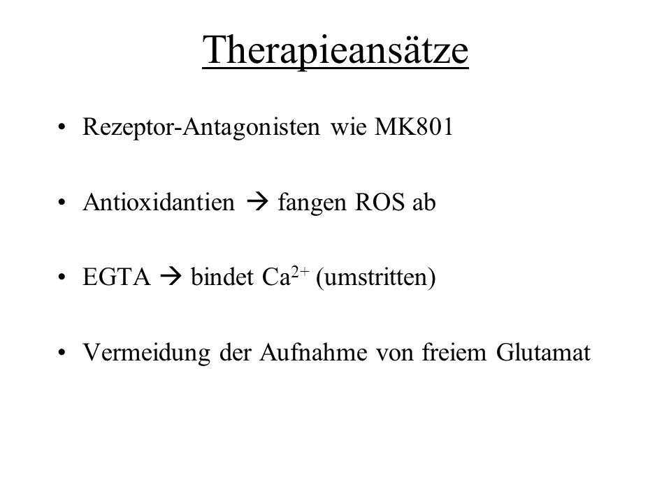 Therapieansätze Rezeptor-Antagonisten wie MK801 Antioxidantien fangen ROS ab EGTA bindet Ca 2+ (umstritten) Vermeidung der Aufnahme von freiem Glutama