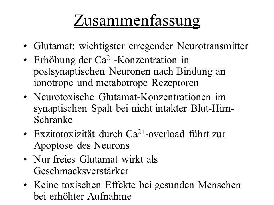 Zusammenfassung Glutamat: wichtigster erregender Neurotransmitter Erhöhung der Ca 2+ -Konzentration in postsynaptischen Neuronen nach Bindung an ionot
