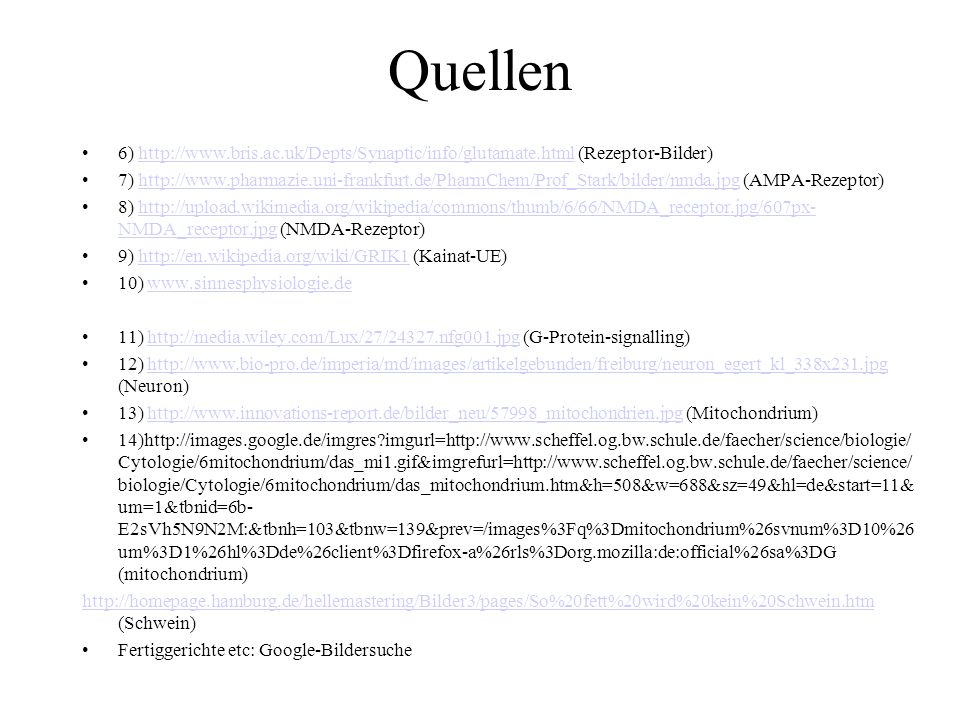 Quellen 6) http://www.bris.ac.uk/Depts/Synaptic/info/glutamate.html (Rezeptor-Bilder)http://www.bris.ac.uk/Depts/Synaptic/info/glutamate.html 7) http: