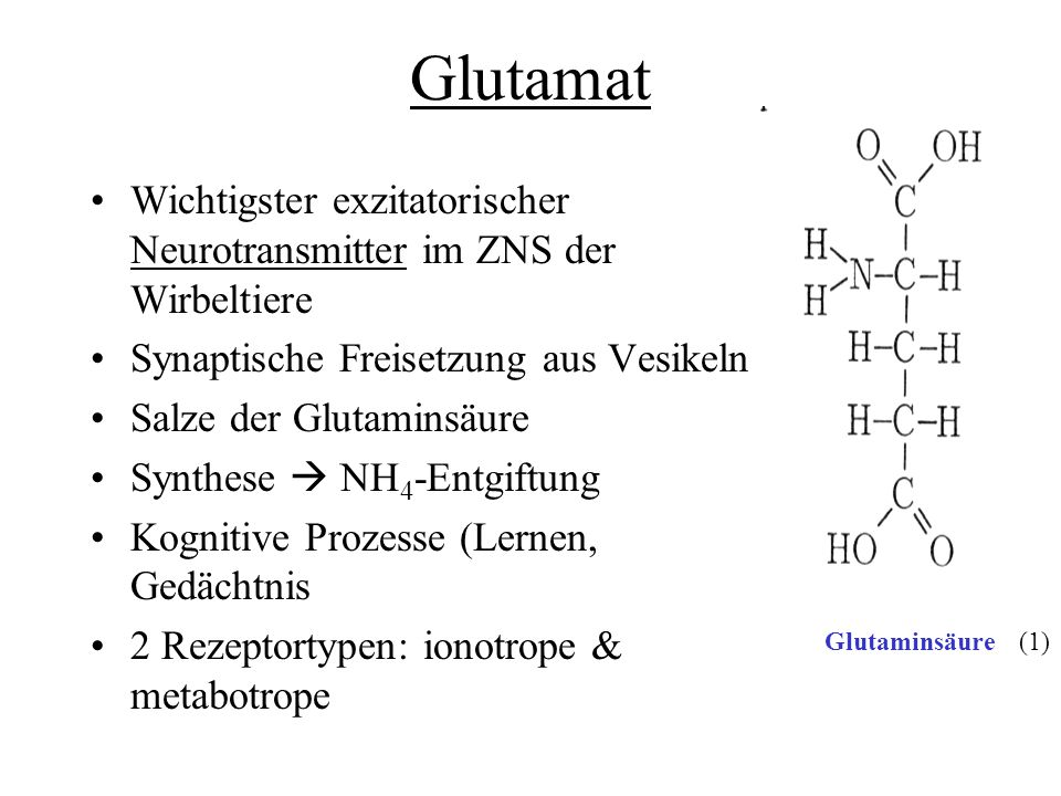 Glutamat Wichtigster exzitatorischer Neurotransmitter im ZNS der Wirbeltiere Synaptische Freisetzung aus Vesikeln Salze der Glutaminsäure Synthese NH