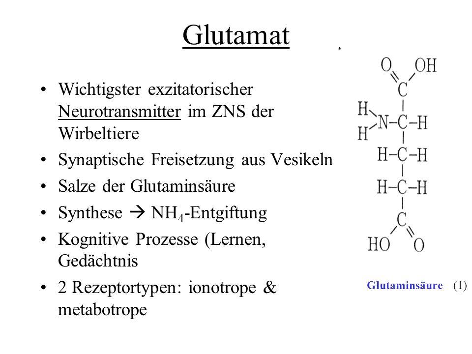 Quellen 6) http://www.bris.ac.uk/Depts/Synaptic/info/glutamate.html (Rezeptor-Bilder)http://www.bris.ac.uk/Depts/Synaptic/info/glutamate.html 7) http://www.pharmazie.uni-frankfurt.de/PharmChem/Prof_Stark/bilder/nmda.jpg (AMPA-Rezeptor)http://www.pharmazie.uni-frankfurt.de/PharmChem/Prof_Stark/bilder/nmda.jpg 8) http://upload.wikimedia.org/wikipedia/commons/thumb/6/66/NMDA_receptor.jpg/607px- NMDA_receptor.jpg (NMDA-Rezeptor)http://upload.wikimedia.org/wikipedia/commons/thumb/6/66/NMDA_receptor.jpg/607px- NMDA_receptor.jpg 9) http://en.wikipedia.org/wiki/GRIK1 (Kainat-UE)http://en.wikipedia.org/wiki/GRIK1 10) www.sinnesphysiologie.dewww.sinnesphysiologie.de 11) http://media.wiley.com/Lux/27/24327.nfg001.jpg (G-Protein-signalling)http://media.wiley.com/Lux/27/24327.nfg001.jpg 12) http://www.bio-pro.de/imperia/md/images/artikelgebunden/freiburg/neuron_egert_kl_338x231.jpg (Neuron)http://www.bio-pro.de/imperia/md/images/artikelgebunden/freiburg/neuron_egert_kl_338x231.jpg 13) http://www.innovations-report.de/bilder_neu/57998_mitochondrien.jpg (Mitochondrium)http://www.innovations-report.de/bilder_neu/57998_mitochondrien.jpg 14)http://images.google.de/imgres?imgurl=http://www.scheffel.og.bw.schule.de/faecher/science/biologie/ Cytologie/6mitochondrium/das_mi1.gif&imgrefurl=http://www.scheffel.og.bw.schule.de/faecher/science/ biologie/Cytologie/6mitochondrium/das_mitochondrium.htm&h=508&w=688&sz=49&hl=de&start=11& um=1&tbnid=6b- E2sVh5N9N2M:&tbnh=103&tbnw=139&prev=/images%3Fq%3Dmitochondrium%26svnum%3D10%26 um%3D1%26hl%3Dde%26client%3Dfirefox-a%26rls%3Dorg.mozilla:de:official%26sa%3DG (mitochondrium) http://homepage.hamburg.de/hellemastering/Bilder3/pages/So%20fett%20wird%20kein%20Schwein.htm http://homepage.hamburg.de/hellemastering/Bilder3/pages/So%20fett%20wird%20kein%20Schwein.htm (Schwein) Fertiggerichte etc: Google-Bildersuche