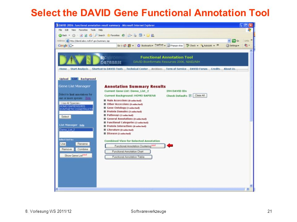 8. Vorlesung WS 2011/12Softwarewerkzeuge21 Select the DAVID Gene Functional Annotation Tool