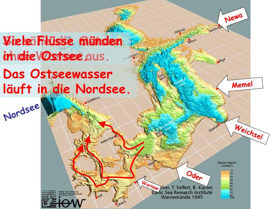 So sähe die Ostsee ohne Wasser aus. Viele Flüsse münden in die Ostsee. Newa Weichsel Oder Warnow Memel Das Ostseewasser läuft in die Nordsee. Nordsee