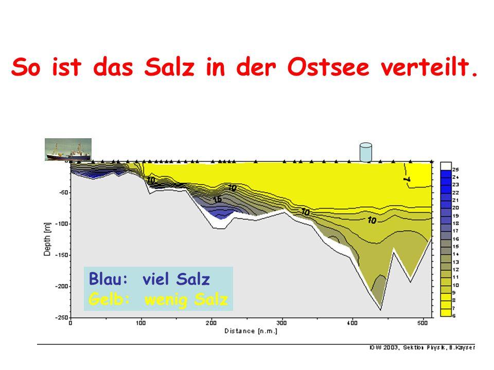 So ist das Salz in der Ostsee verteilt. Blau: viel Salz Gelb: wenig Salz