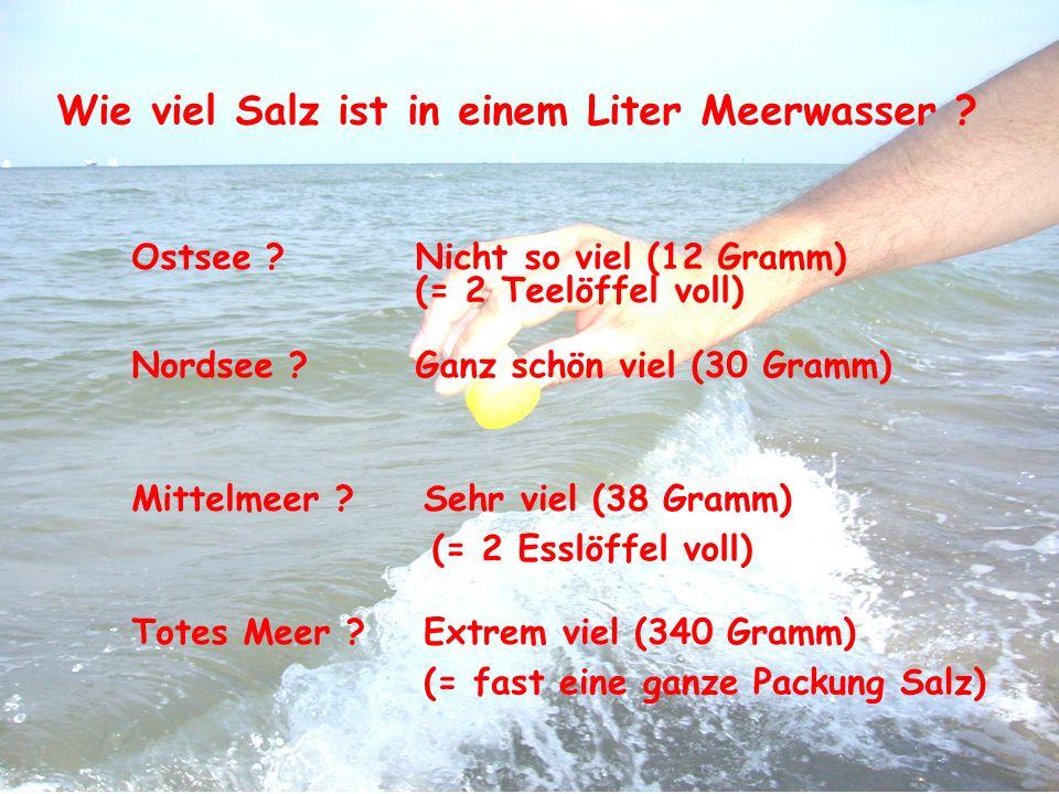 Wie viel Salz ist in einem Liter Meerwasser ? Ostsee ? Nordsee ? Mittelmeer ? Totes Meer ? Nicht so viel (12 Gramm) Ganz schön viel (30 Gramm) Sehr vi