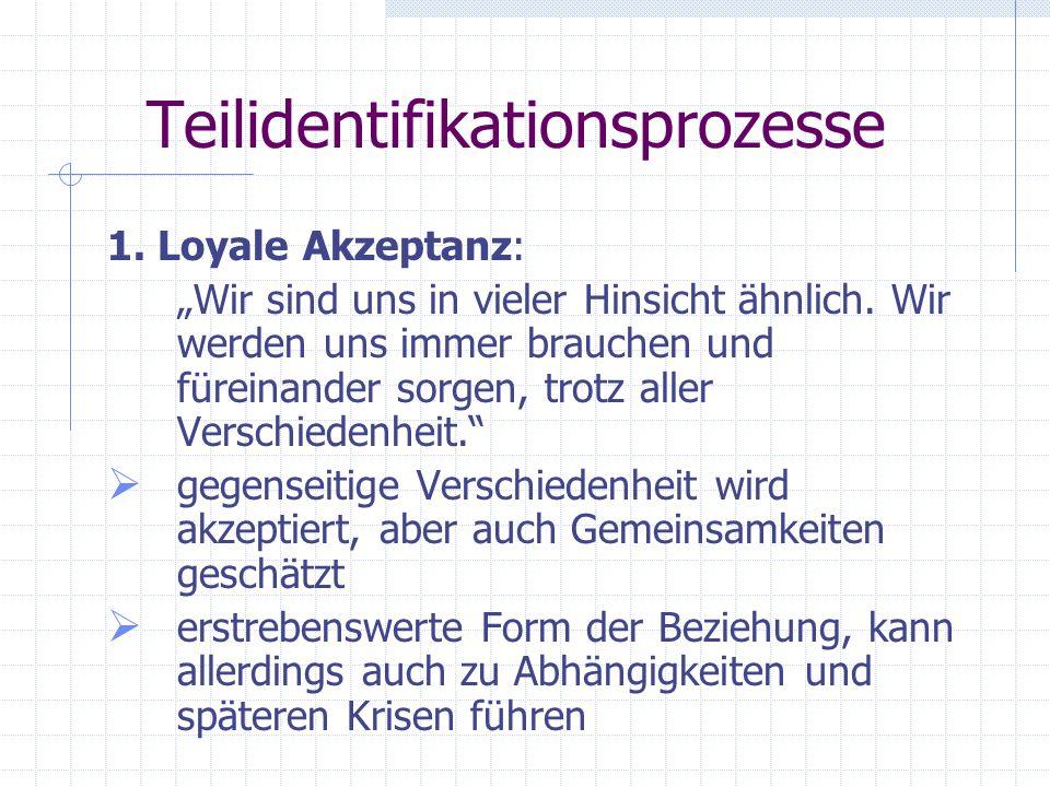 Teilidentifikationsprozesse 3 Prozesse: 1. Loyale Akzeptanz 2. Konstruktive Dialektik 3. Destruktive Dialektik
