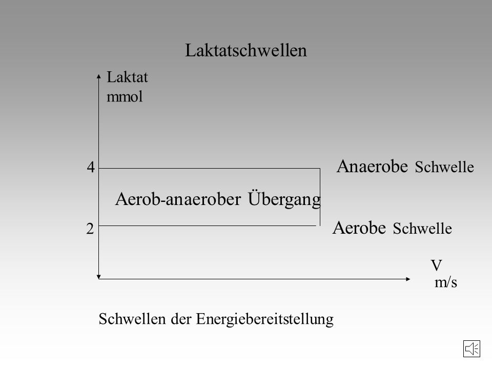 Umfang der beanspruchten Muskulatur Art der Energiebereitstellung Arbeitsweise der Muskulatur Zeitdauer der Beanspruchung Zusammenhang mit anderen kon