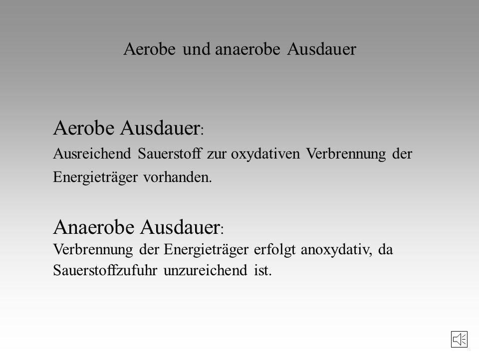 Schwellen der Energiebereitstellung V m/s Aerob - anaerober Übergang 2 4 Aerobe Schwelle Anaerobe Schwelle Laktat mmol Laktatschwellen