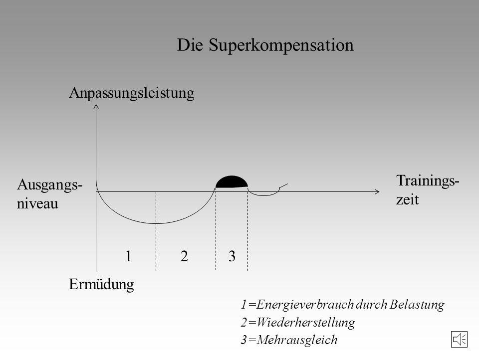 Trainingsprinzipien Übergeordnetes Trainingsprinzip : Prinzip der optimalen Relation von Belastung und Erholung (Homöostase, Superkompensation) Prinzi