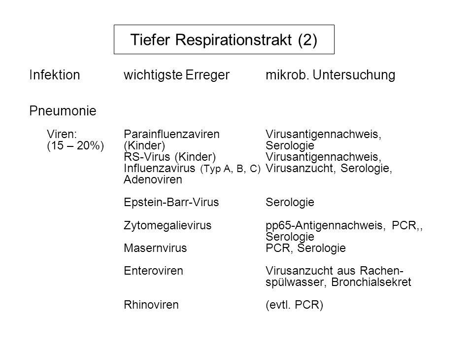 Tiefer Respirationstrakt (2) Pneumonie Viren:ParainfluenzavirenVirusantigennachweis, (15 – 20%)(Kinder)Serologie RS-Virus (Kinder)Virusantigennachweis