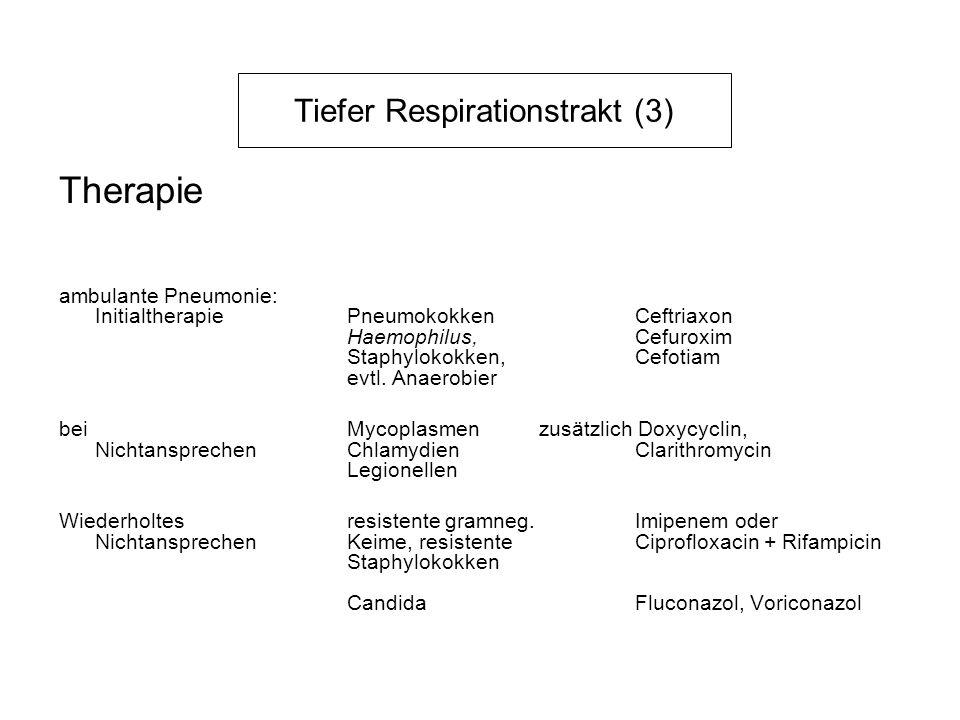 Tiefer Respirationstrakt (3) Therapie ambulante Pneumonie: InitialtherapiePneumokokken Ceftriaxon Haemophilus, Cefuroxim Staphylokokken, Cefotiam evtl