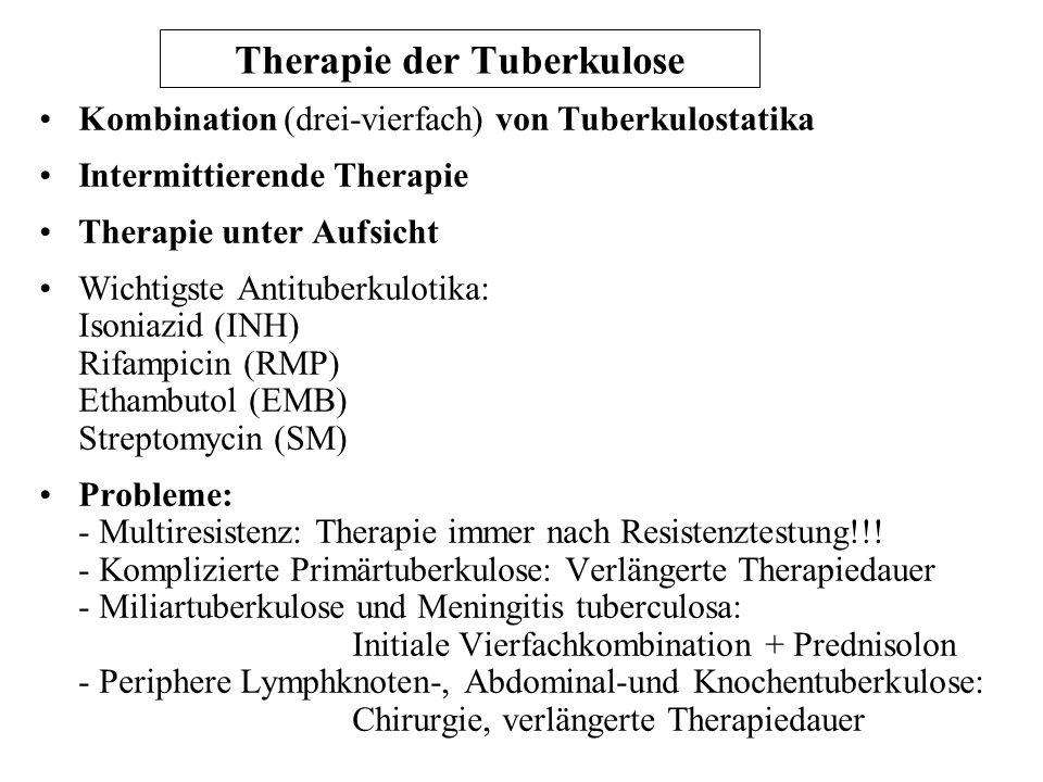 Therapie der Tuberkulose Kombination (drei-vierfach) von Tuberkulostatika Intermittierende Therapie Therapie unter Aufsicht Wichtigste Antituberkuloti